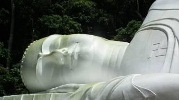 QiGong hilft gegen Rückenschmerzen