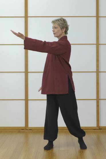 Die 18 Formen Taiji QiGong | Frühkurs