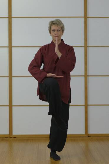 Shaolin Herbst QiGong