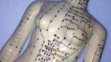 Die Meridiane in der traditionellen chinesischen Medizin