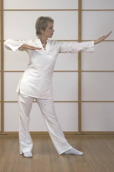 Gesundheits-QiGong Ma Wang Dui – Lehrvideo