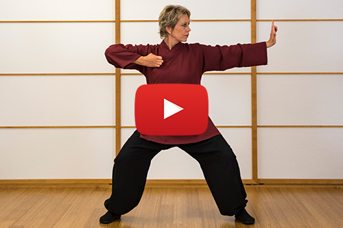 QiGong-Videos - Übungsvideos