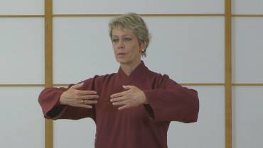 18 Formen Taiji QiGong – Video-Präsentation